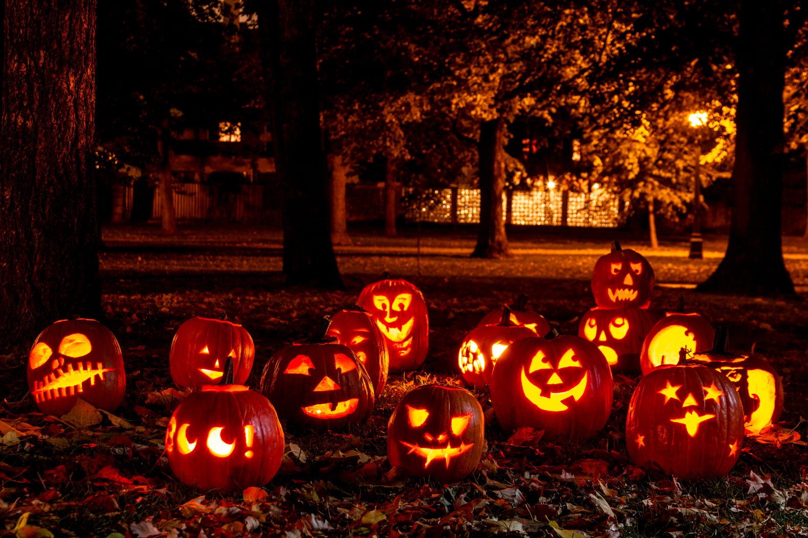 Pumpkin Halloween Lights